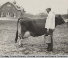 President Elliott standing, with pail, next to cow