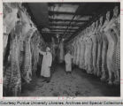 Men inspecting meat carcasses