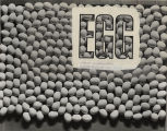 Overhead view of eggs