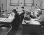 Women seated at desks in office