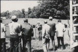 Trustees' tour of university farms