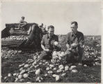 Men inspecting potatoes in field