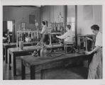 Two students working in laboratory