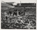People on demolished football field