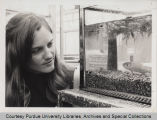 Carole A. Lembi looking at fish in tank