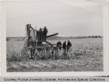 Glen Smith and others in corn field with agricultural machinery