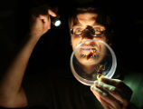 Grzesiek Buczkowski, holding flashlight and looking at bugs
