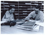 Students studying in Management and Economics Library