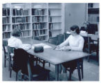 Students studying in Consumer and Family Sciences Library
